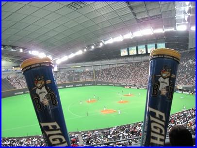 baseball-2010-4-28-2.jpg