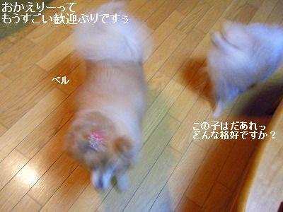 s-2010_0119トール作品倉庫0014