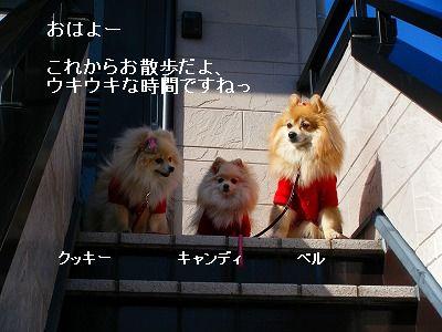 s-2010_0119トール作品倉庫0023