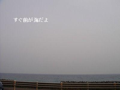 s-1005040036.jpg