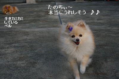 s-IMG_6794.jpg