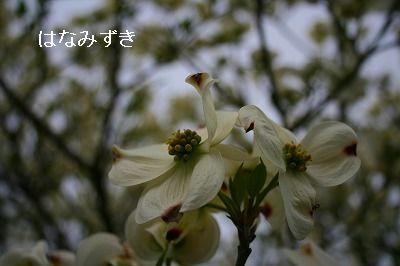 s-IMG_7015.jpg