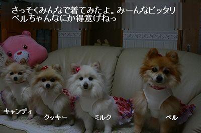 s-IMG_7033.jpg