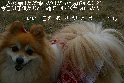 s-IMG_7049.jpg