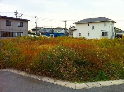 草刈り (3)