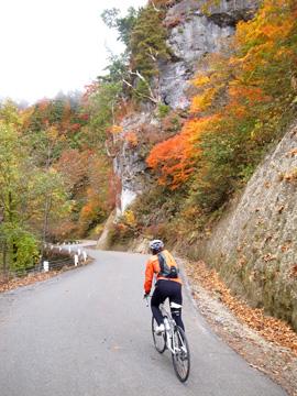 秋山郷紅葉サイクリング(その2)16