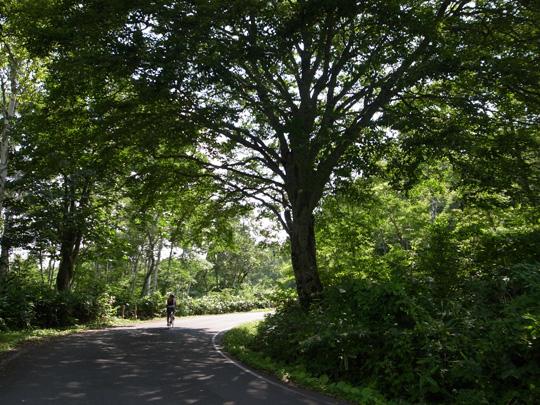 奥志賀林道&関田峠サイクリング(その1)1