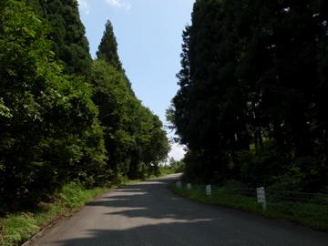 奥志賀林道&関田峠サイクリング(その3)17