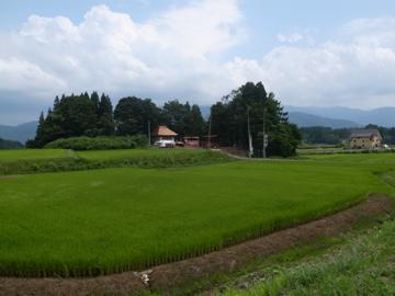 奥志賀林道&関田峠サイクリング(その3)12