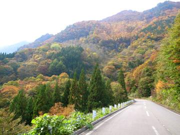 秋山郷紅葉サイクリング(その1)19