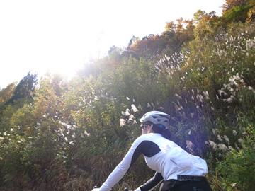 秋山郷紅葉サイクリング(その1)23