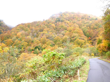 秋山郷紅葉サイクリング(その2)105