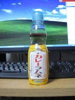 2009_11_22.jpg