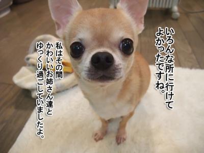 DSCF9469p.jpg