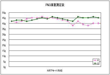 体重測定グラフ10月下旬~11月20日