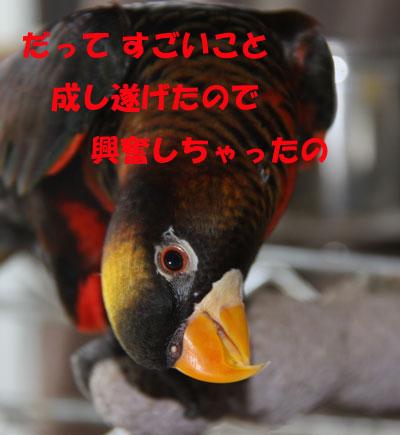 うげげげ3