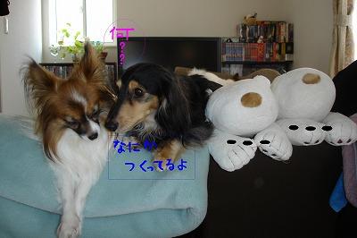 s-ohanashinaka nuri
