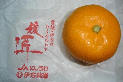 s-dotodokimashitayo.jpg