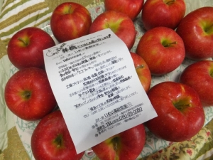 13 10 26ichinoiseki(2)