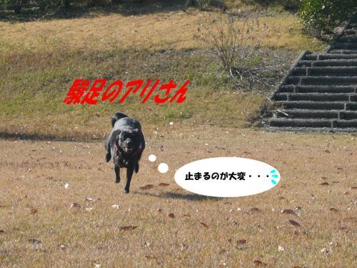 駿足7-1