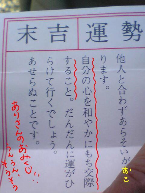 おみくじ(アリ)