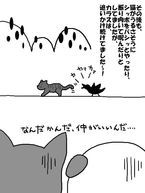 カラスと猫3