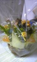2011結婚記念日母から