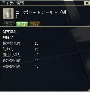 ss20091120e.jpg