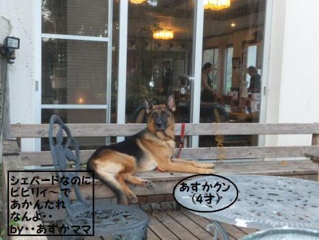播磨中央公園r