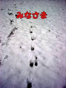 2010_gantan14.jpg
