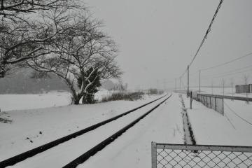 九州雪国紀行(12)
