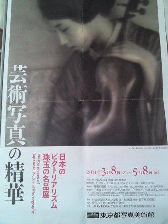 ピクトリアポスター2