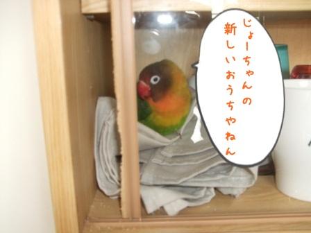 001_20100518201646.jpg