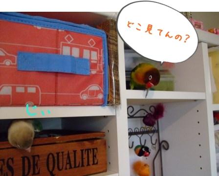 003_20101005202329.jpg
