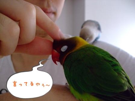 025_20101020205642.jpg