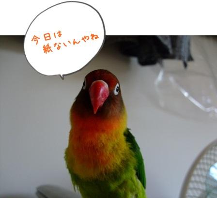 029_20100906210719.jpg