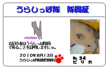 urasippo_no34.jpg