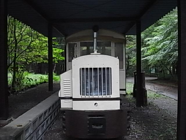 279.jpg