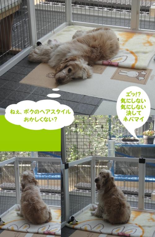 20100601-0847-42.jpg