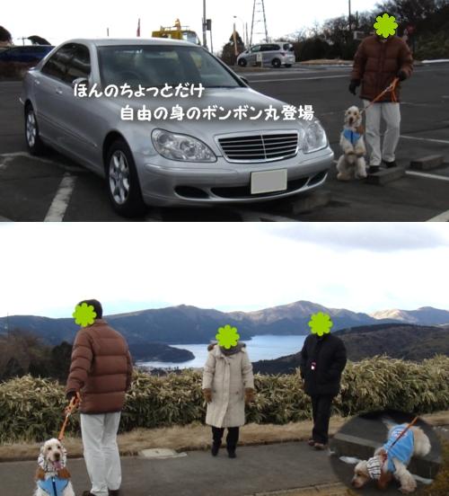 20110130-1324-00.jpg