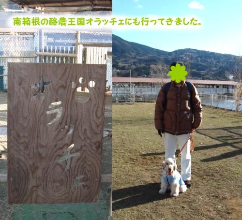 20110130-1512-47.jpg
