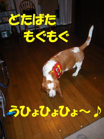 01_setsubun04.jpg