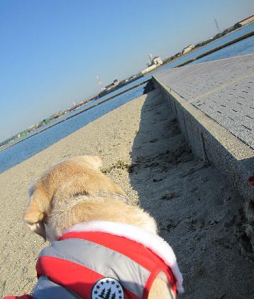 2009122海は寒い