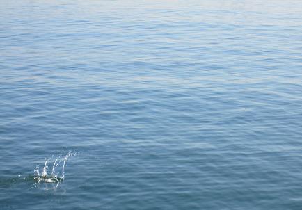 20091225海は寒い