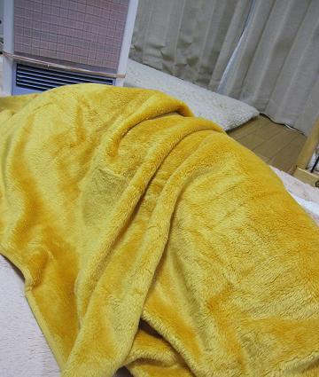 20091275ふかふか