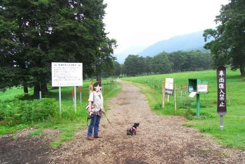 110818笹ヶ峰牧場