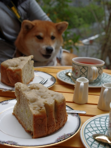 111110ケーキ