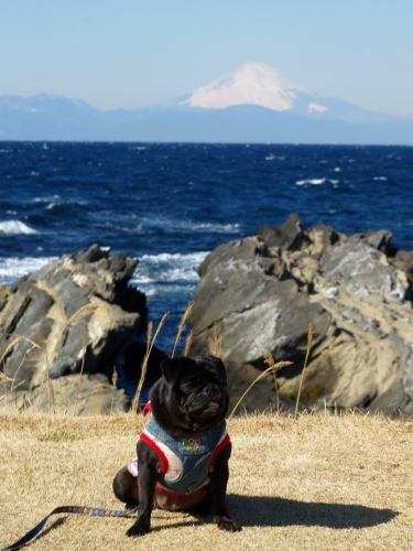 120204富士山