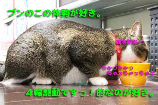 IMG_00114輪駆動!