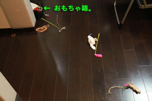 IMG_0009_Rおもちゃ箱
